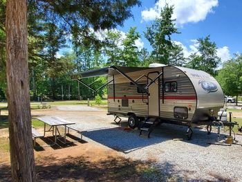 2019 Forest River Wolf Pup 18TO  - Travel Trailer RV on RVnGO.com